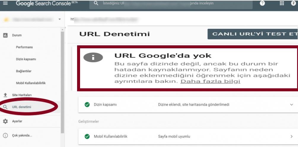 Google Dizine Ekleme URL Denetimi